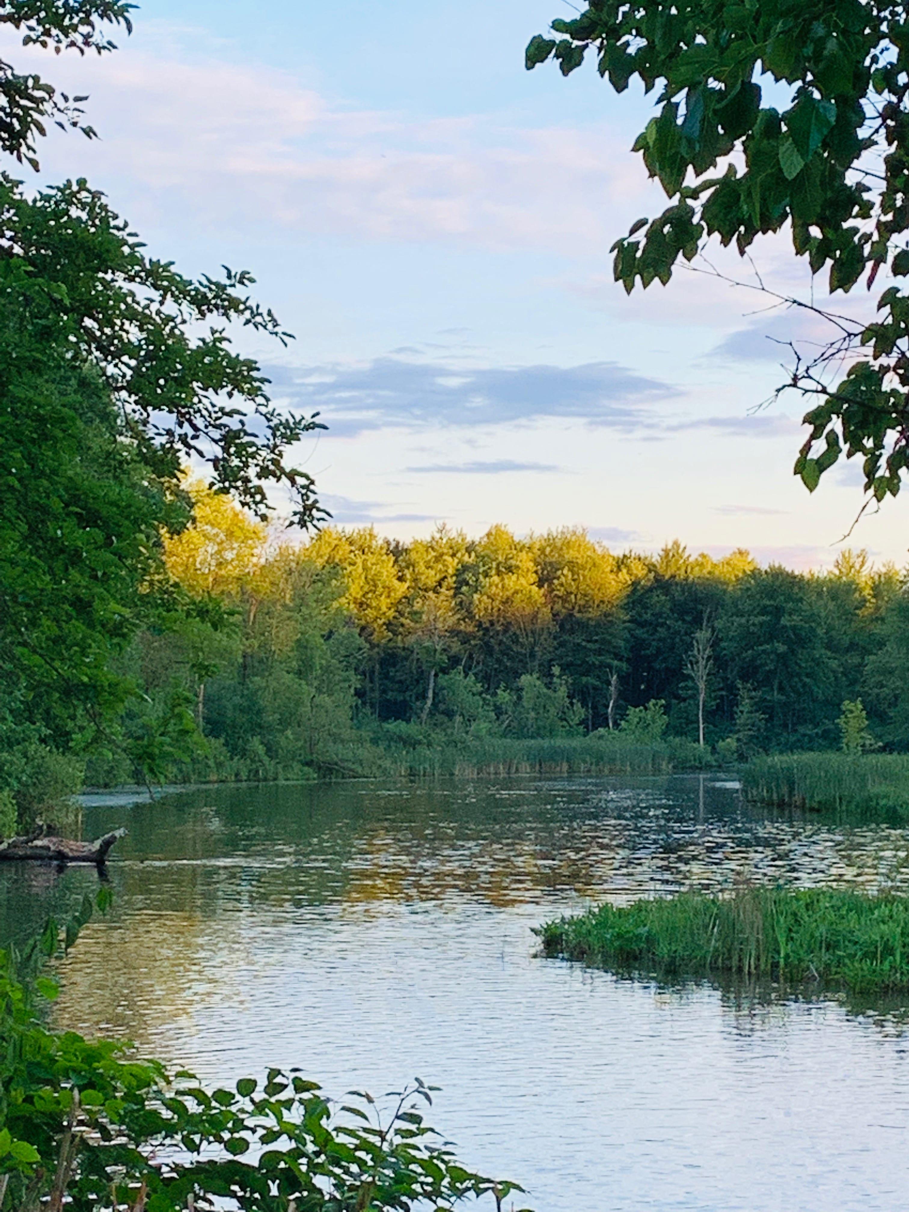 New York Kayaking, New York Canoeing, Saratoga Springs Paddle Club, New York Water sports, New York Water Recreation, New York Nature, New York Adventure, Local New York Water Recreation, New York Exercise, Adirondacks, Upstate New York Recreation, Water Recreation Club, Fish Creek in Saratoga Springs New York